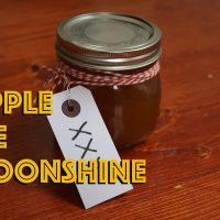 Apple pie mooonshine