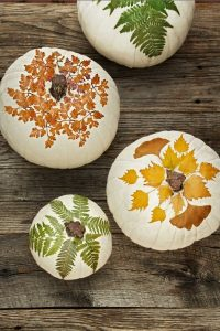 thanksgiving decor pumpkins