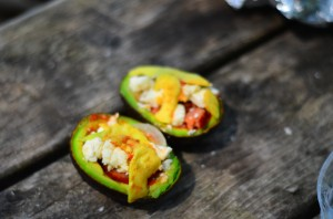 Campfire avocado bake recipe