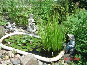 claw foot bathtub pond