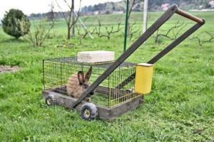 Eco-friendly lawn mower