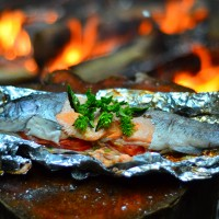 Fillet Fish How to