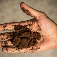 recycle coffee grounds