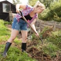 DIY compost bin tips