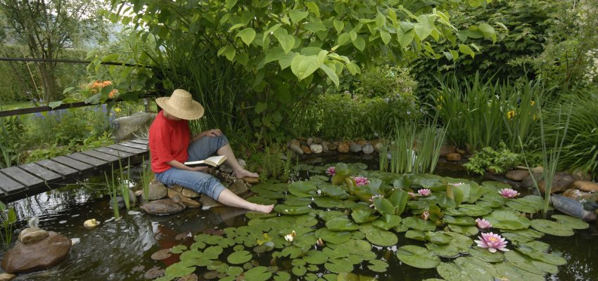 6 upcycled garden ponds you can make this weekend for Still pond garden design