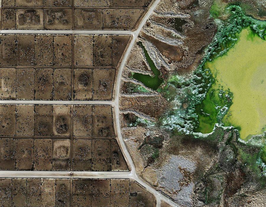 Factory farming essay