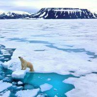 Best Global Warming websites