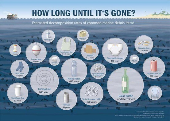 Talking Trash: How long does your Garbage take to Decompose?