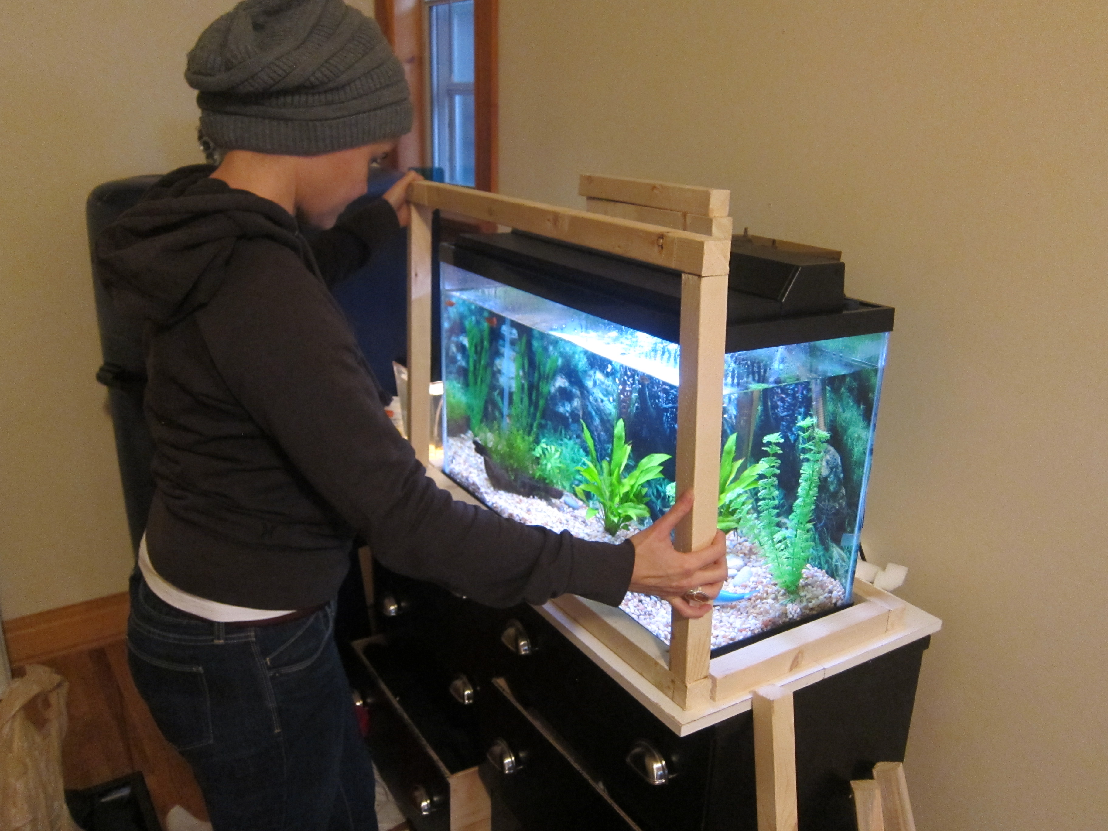 Turn your fish tank into aquaponics for How to make your own fish tank