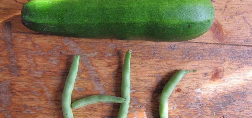 DY indoor veggies