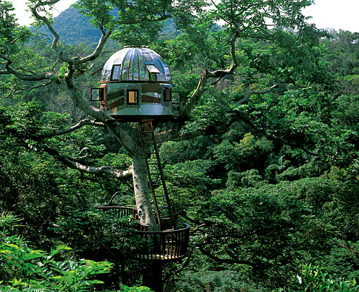 The World 39 S Best Tree Houses