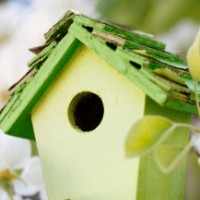 blog_spring_birdhouse