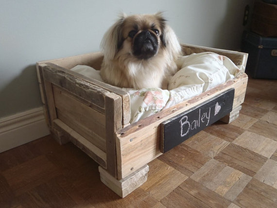 Green living: Old Bits of Wood Dog