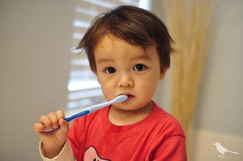 toddler-brushing-teeth