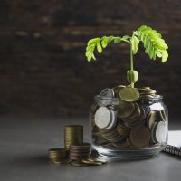 green living investments